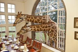 Hotel-Nairobi-kenya-africa