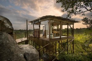 Casele din copaci -Africa de sud